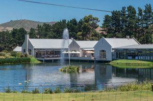 nitida-wine-farm-durbanville-south-africa