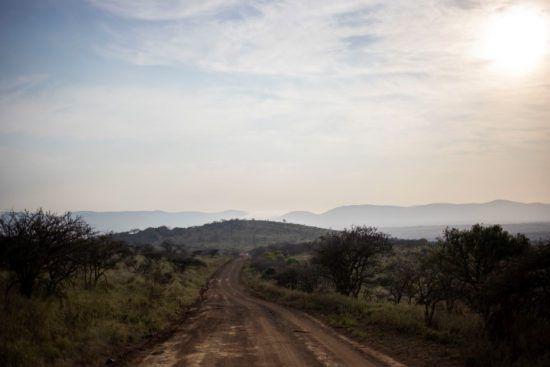Ein weg führt durch die hügelige Buschlandschaft von KwaZulu-Natal