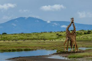 Africa off the Beaten Track