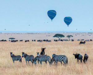 Voyage au Kenya : survolez zèbres et buffles en montgolfière