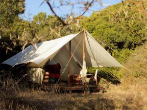 Nuit insolite lors d'un safari sur la Garden Route en Afrique du Sud : tentes luxueuses et safari.