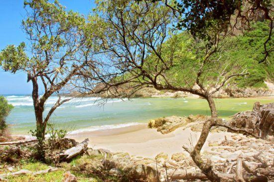 Traumhafter Strand und türkisblaues Wasser im Tsitsikamma Nationalpark an der Garden Route