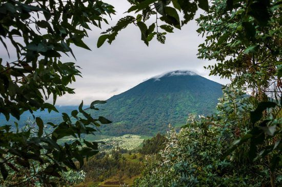 Blick auf Vulkan im Volcanoes Nationalpark in Ruanda