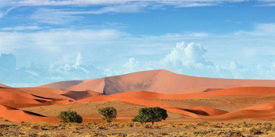 Covid-19 peak in Africa