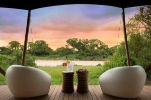 TImbavati et la réserve du lion blanc ! Elle est parsemée de lodges somptueux et luxueux tels que le &Beyond Ngala.