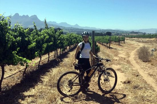 Passeio de bicicleta por vinícolas sul-africanas promovido por Rent a Bicycle