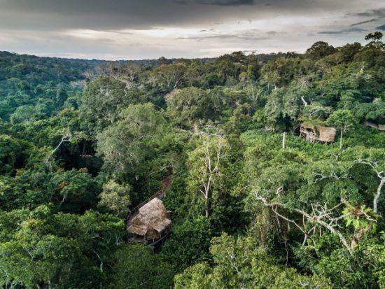 Das Ngaga Camp eingebettet in den Regenwald der Republik Kongo