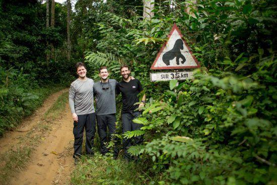 Drei Männer stehen vor einem Gorilla-Schild in der Republik Kongo