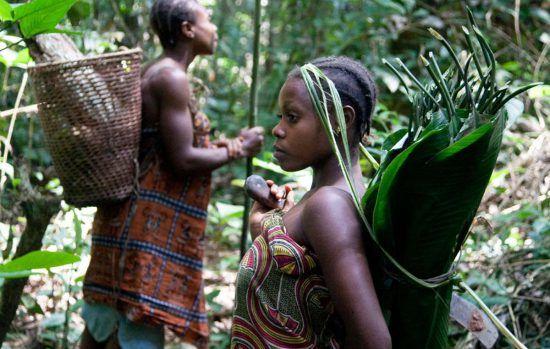 Voyage au Congo-Brazzaville