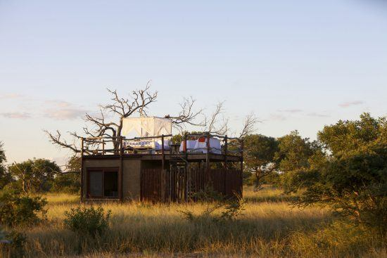 Safari à Kapama | Petit refuge romantique au milieu de la nature