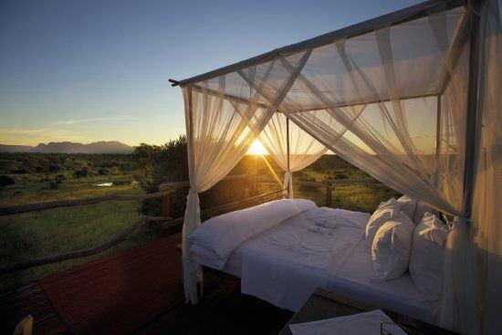 Das romantische Baumhaus auf Safari im Kapama Private Game Reserve