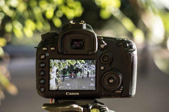 Aufnahme einer Kamera, die den südafrikanischen Busch ablichtet