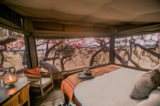 Ausblick vom Baumhaus Dove's Nest der Safari-Lodge The Hide im Hwange Nationalpark