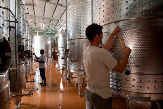 Zwei Männer testen Weine im Weinkeller von Babylonstoren