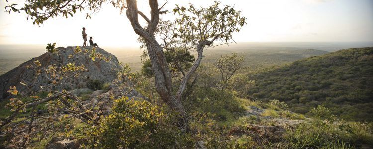 &Beyond Phinda Private Game Reserve in KwaZulu-Natal bushwalk activity