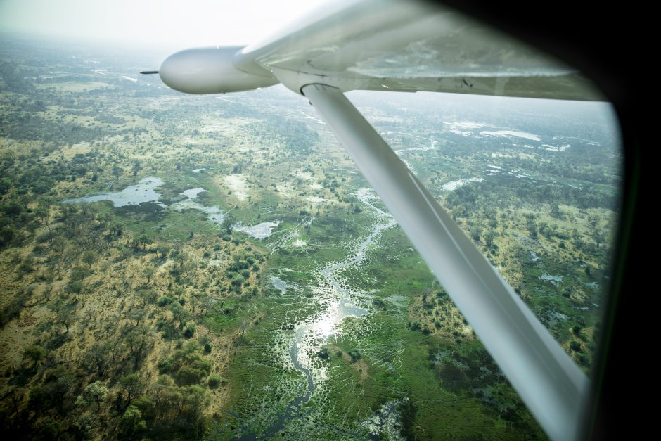 Delta do Okavango visto das alturas durante uma viagem aérea