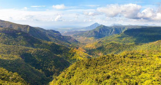 Black River Gorges National Park on the island of Mauritius
