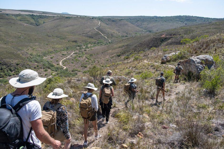 Rhino Africa auf dem Pioneer Trail im Gondwana Game Reserve