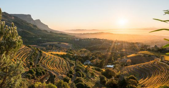 Cape Winelands in Cape Town, South Africa