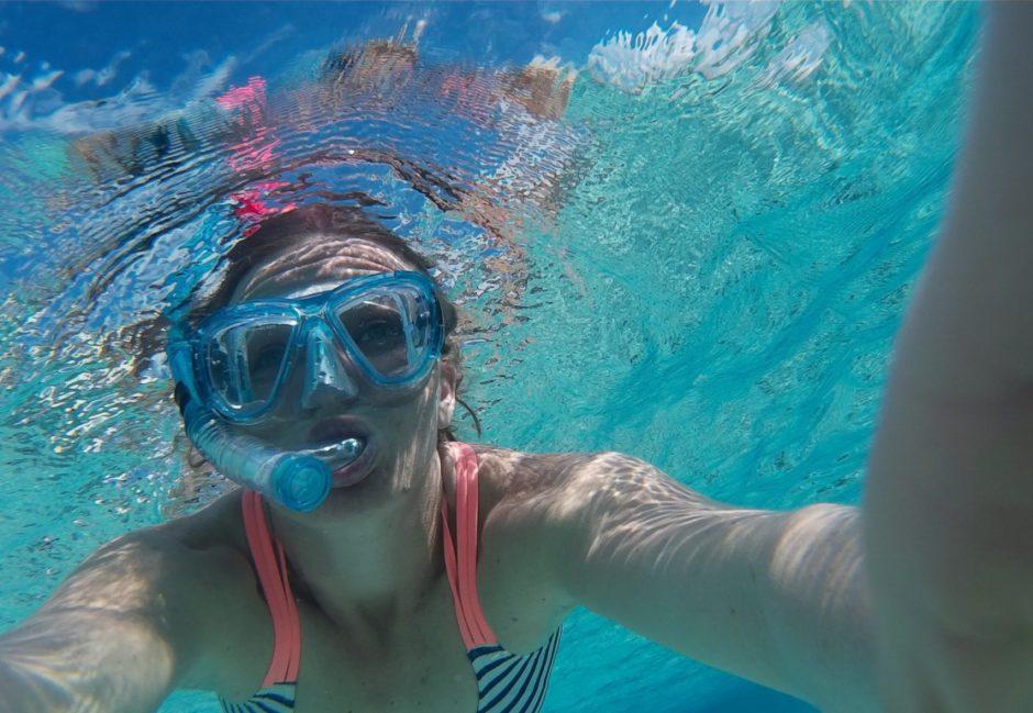 Découverte de la vie marine en snorkelling