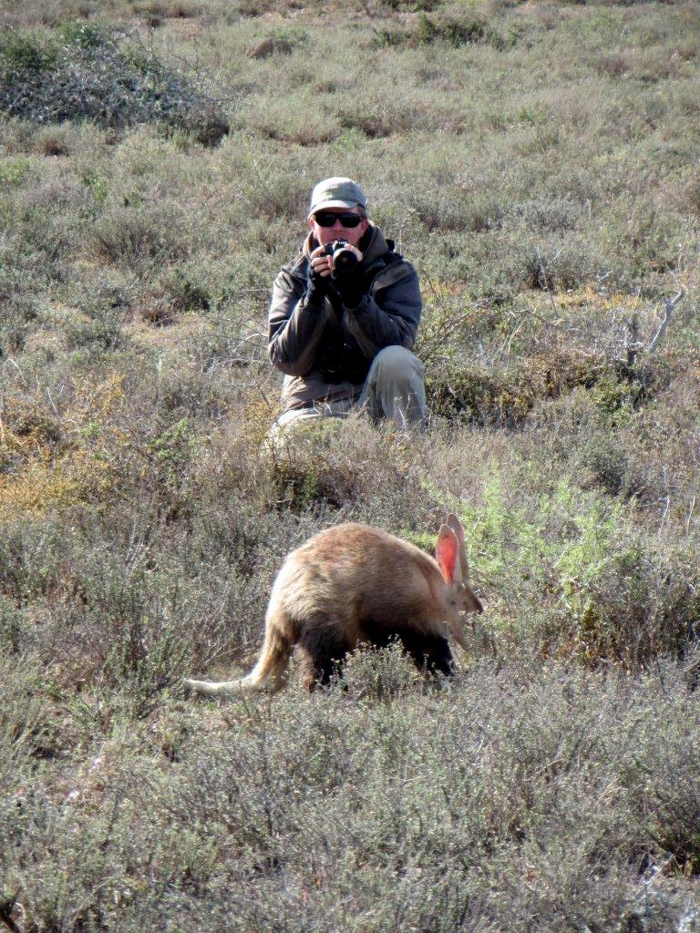 Photographing an aardvark on foot in Kwandwe Private Reserve