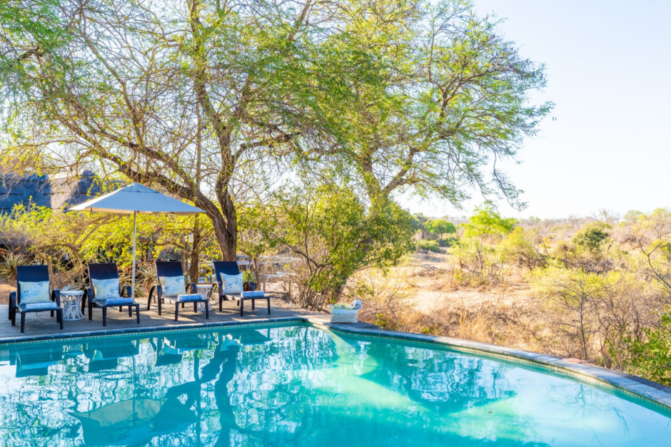 Pool with bush views at Thornybush Game Lodge