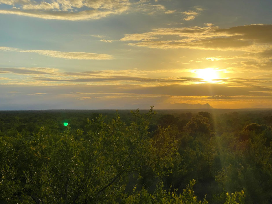 Aussicht vom Deck, das James von der Senalala Safari Lodge im Busch errichtet hat