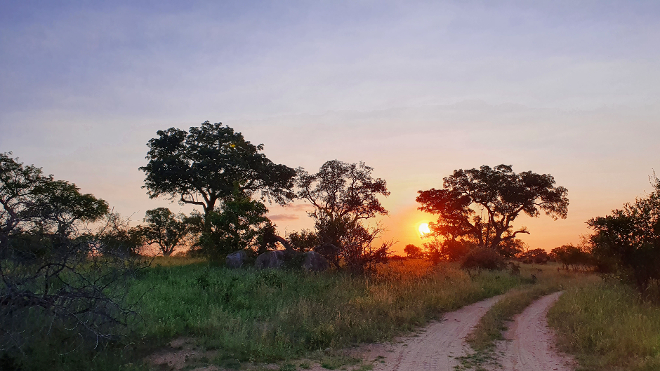 Beautiful African sunset at Londolozi Private Game Reserve