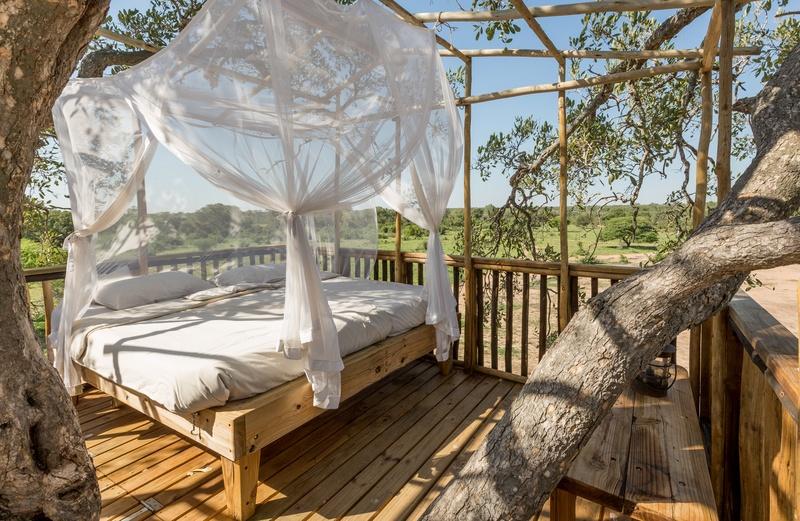 Des lodges de qualité pour les budgets plus limités: Maison dans les arbres à Umlani Bushcamp