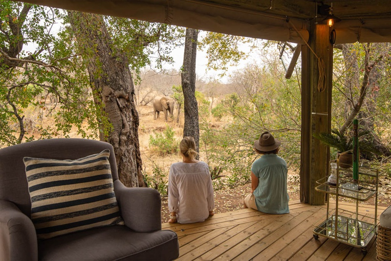 Game viewing from the modern Safari Trails Camp