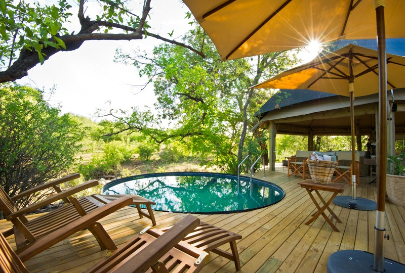 The plunge pool and sun deck at Klaserie Sands Safari Trails Camp
