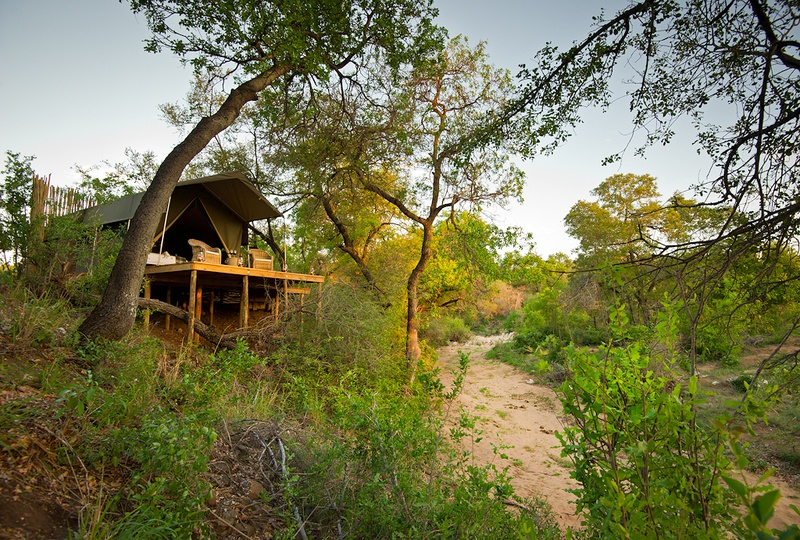 Four beautifully appointed tents boasting elevated views of the riverbed