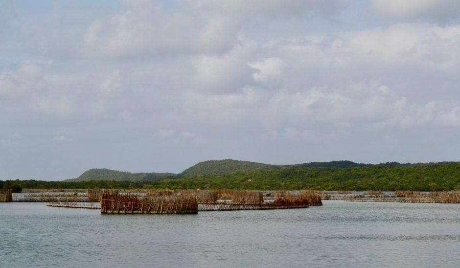 Pièges à poissons Thonga, en KwaZulu-Natal