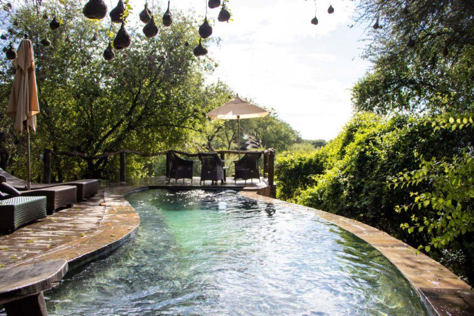 Swimming pool at Motswiri Private Safari Lodge