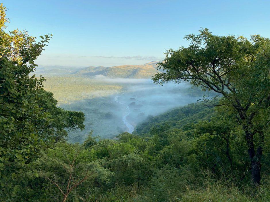 Schlucht mit Fluss im Hluhluwe Imfolozi Game Reserve in Südafrika
